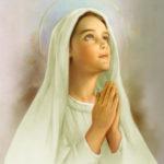 Oración: Yo me ofrezco todo á Vos… a Virgen María
